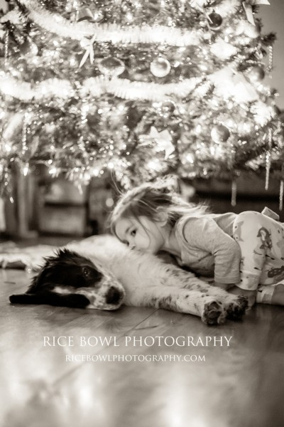Colorado Pet Photographer Hope Defined Mountain Pet Rescue Foster Adopt